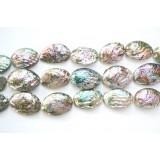 Abalone Shell 35x45mm Oval